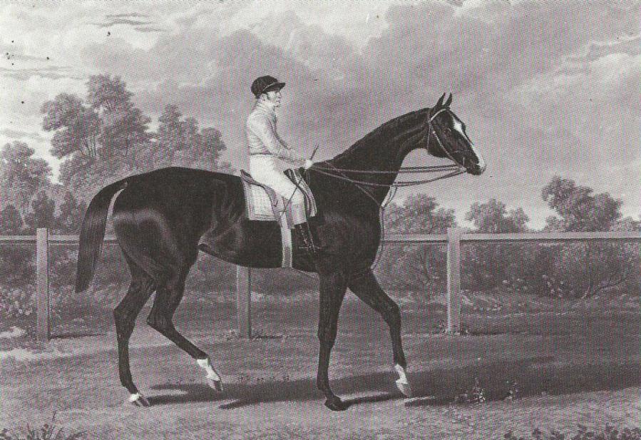 Queen of Trumps 1835