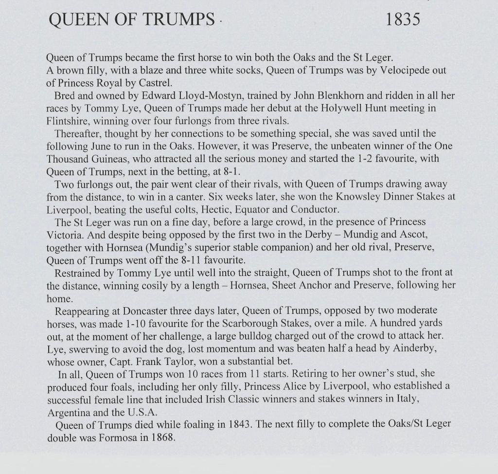 Queen of Trumps essay