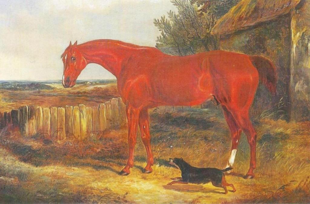 Grand Nat 1836-37 The Duke